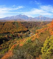 八ヶ岳の紅葉フォトライブラリー